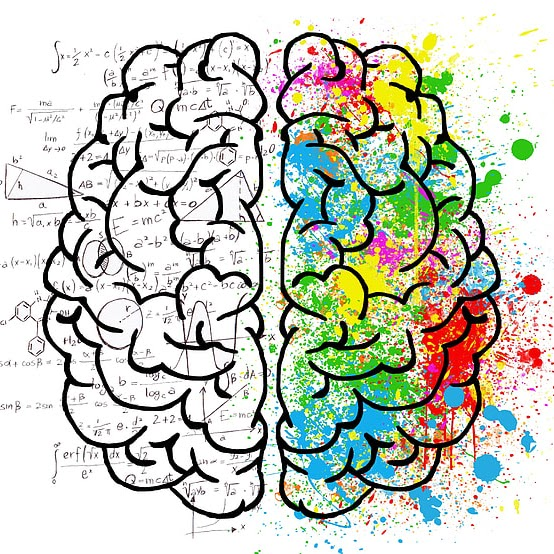 TCOE Brain Learning Diagram